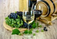 A la découverte du vin