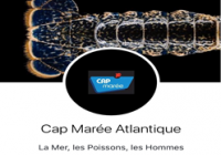 Cap Marée