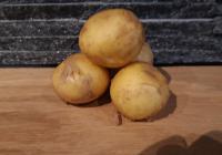 Pommes de Terre Nouvelle